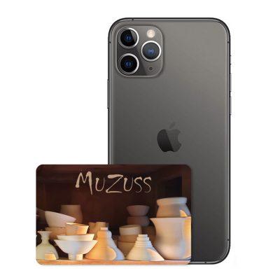 Chippedcard_muzuss